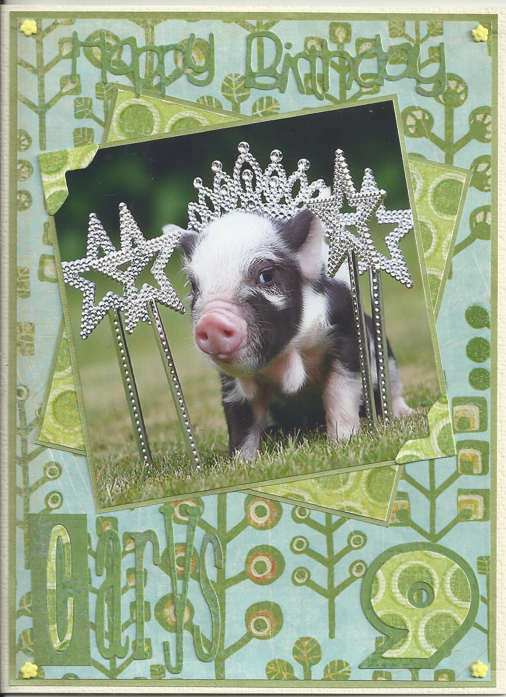 Birthday pig