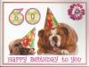 60th birthday bulldogs