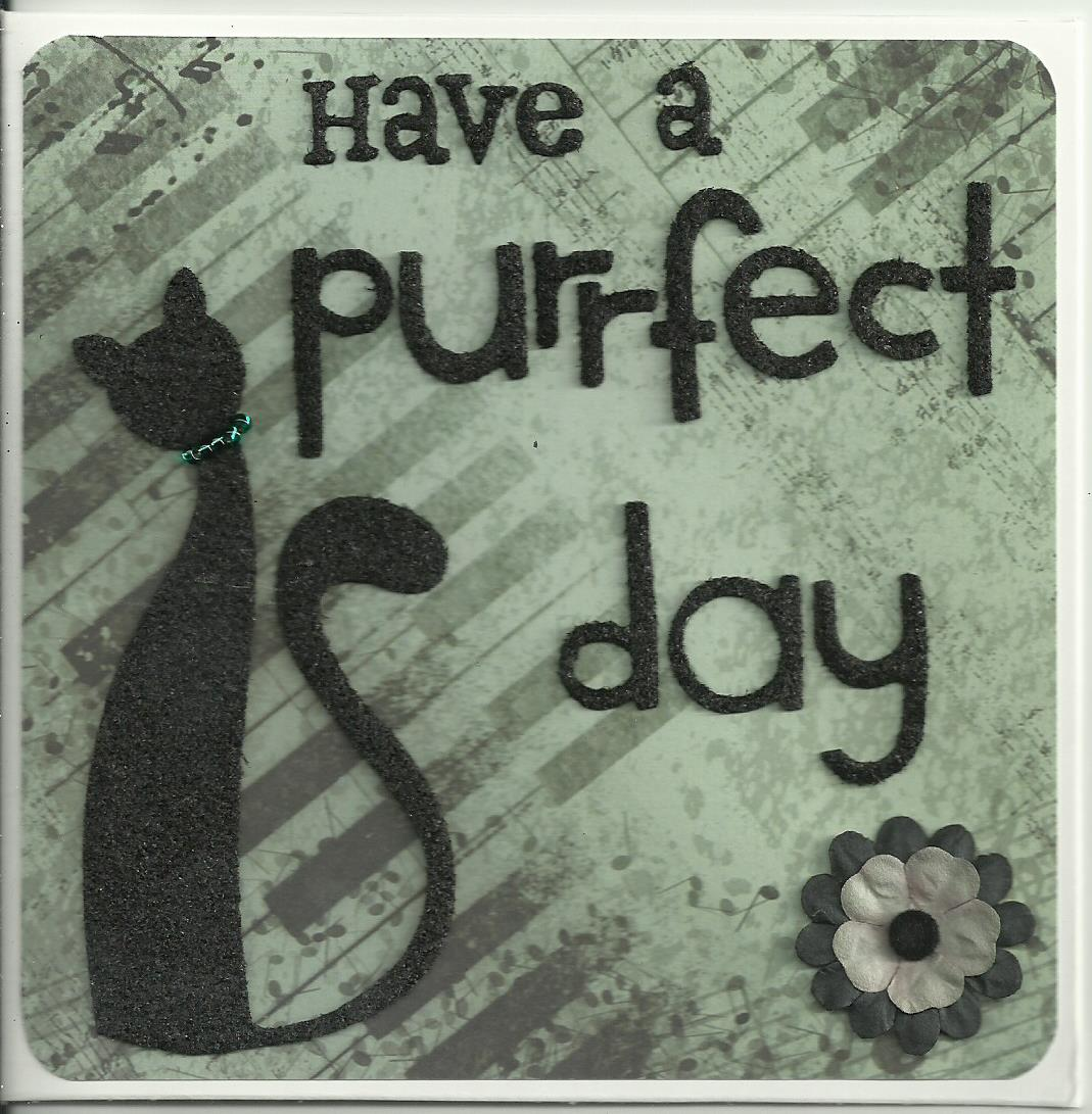 Purrfect day 4